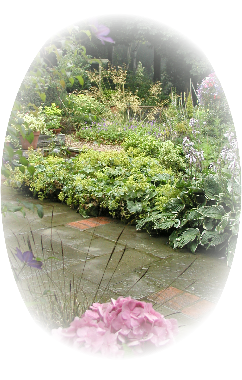 Hallam Garden Design - client stories